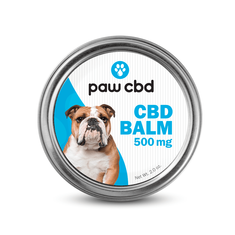 CBD balm for your furry friend also available advice on Chesterton, IN cannabis oil for pain relief