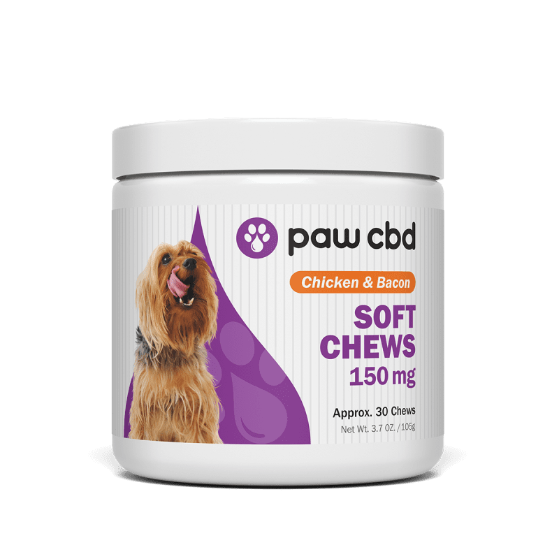 CBD chews for your furry friend along with advice on Dyer, IN CBD Oil for pain relief